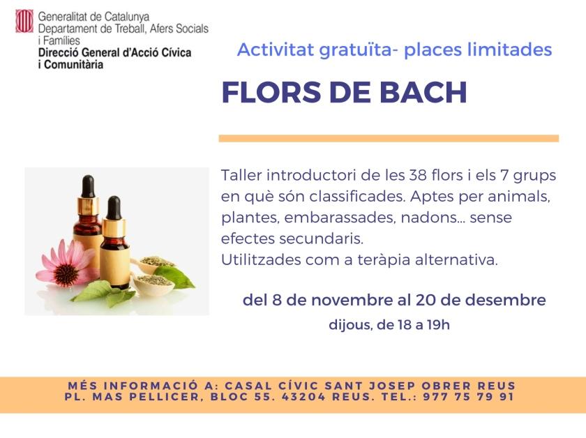 Flors de Bach - activitats CC Sant Josep Obrer.jpg